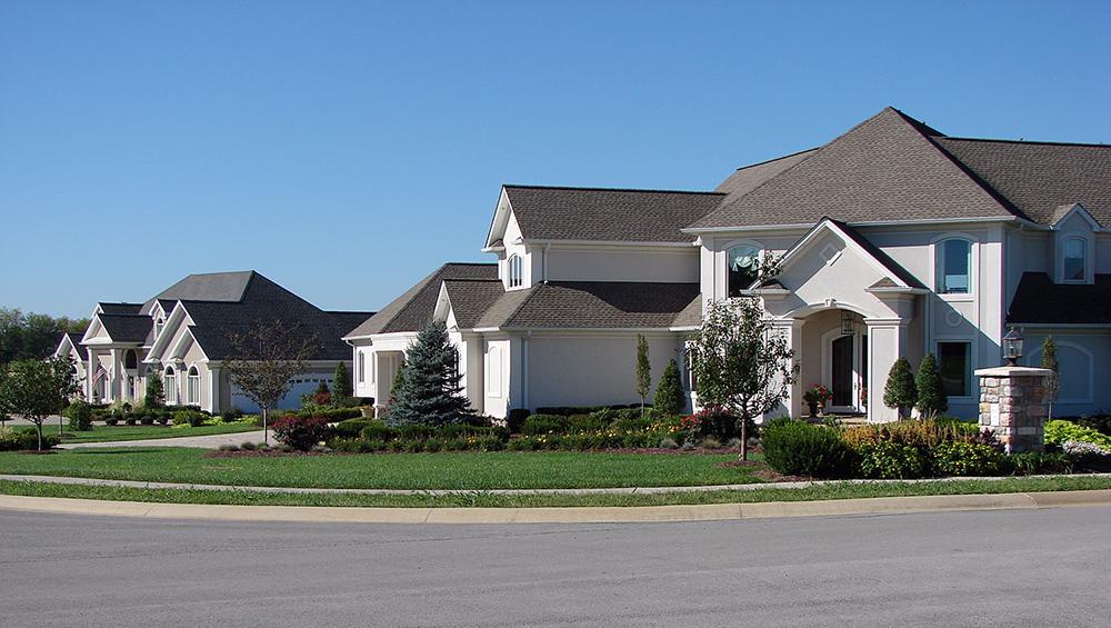 two large residential houses with trees and shrubs in front